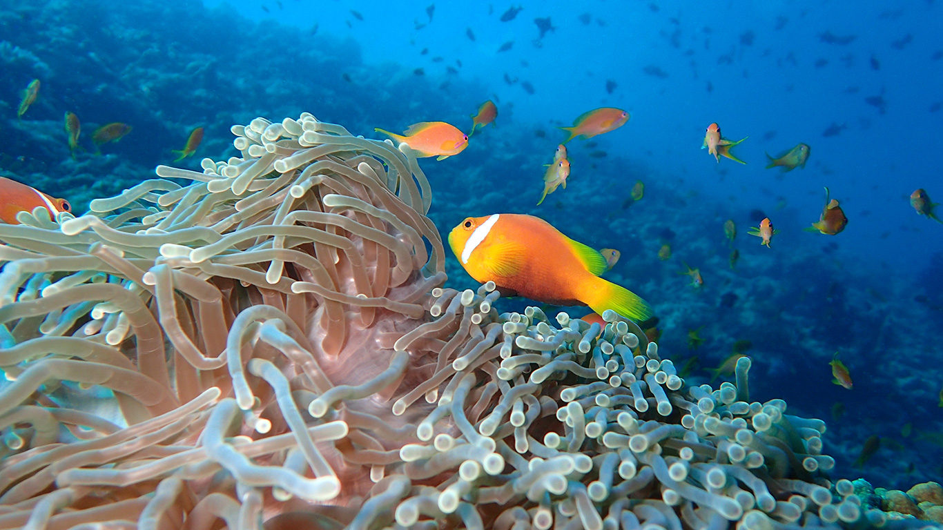 The_Nautilus_Maldives_23